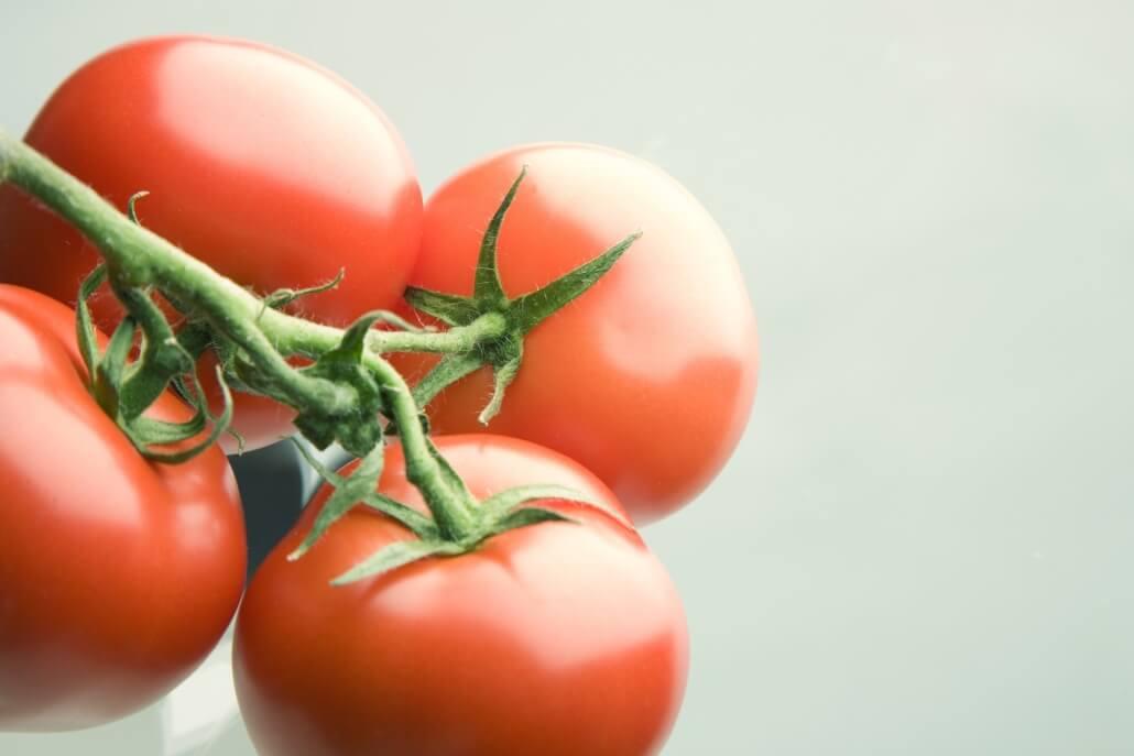 Tomatenpflanzen richtig pflegen